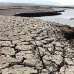 2020 Ekolojik Yıkımın Üretim İlişkileri: Pandemi ve Kuraklık